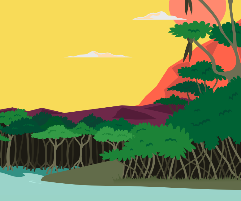 This is an illustration of a mangrove