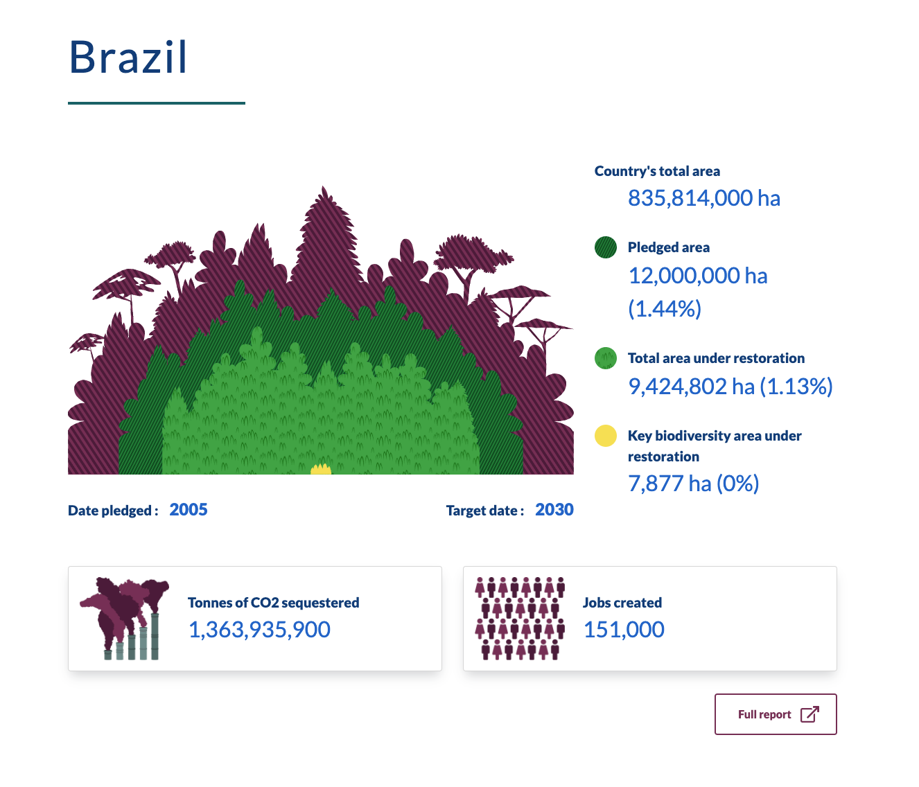 This is a screenshot of a graphic showing Brazils progress